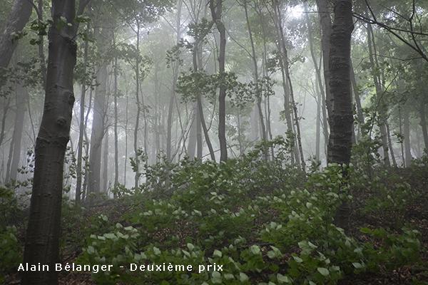 ABelanger_2